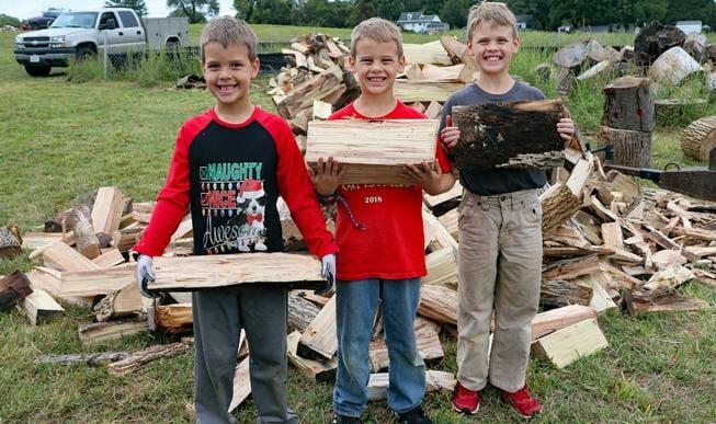Fauquier Community Coalition, Firewood Initiative, Three Boy Volunteers